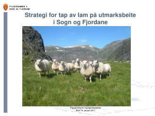 Strategi for tap av lam p� utmarksbeite  i Sogn og Fjordane