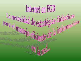 Internet en EGB La necesidad de estratégias didácticas  para el manejo eficiente de la información