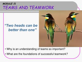 MODULE 21 TEAMS AND TEAMWORK
