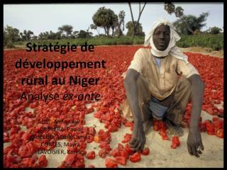 Stratégie de développement rural au Niger    Analyse  ex-ante