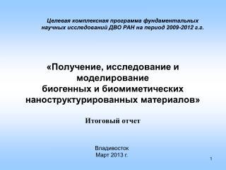 Владивосток Март 2013 г.
