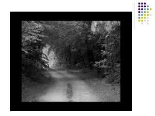 Sec 3 EFL : Taman Negara