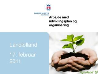 Arbejde med udviklingsplan og organisering