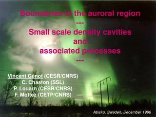 Boundaries in the auroral region  --- Small scale density cavities and associated processes ---