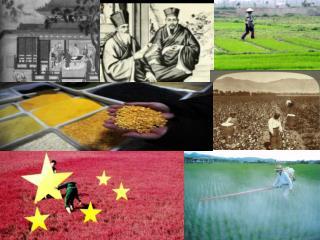 Antiguas poblaciones agrícolas en China.