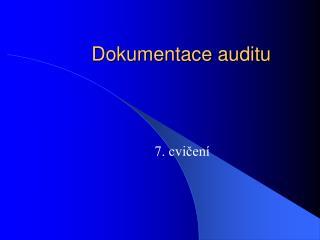 Dokumentace auditu