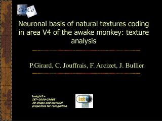 Neuronal basis of natural textures coding in area V4 of the awake monkey: texture analysis