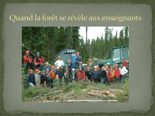 Quand la forêt se révèle aux enseignants