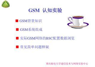 GSM   认知实验