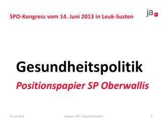 SPO-Kongress vom 14. Juni 2013 in Leuk-Susten