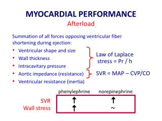 MYOCARDIAL PERFORMANCE A fterload