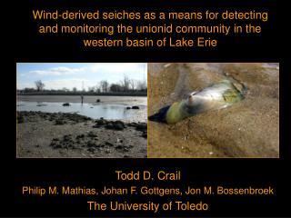 Todd D. Crail Philip M. Mathias, Johan F. Gottgens, Jon M. Bossenbroek The University of Toledo