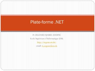 Plate-forme .NET