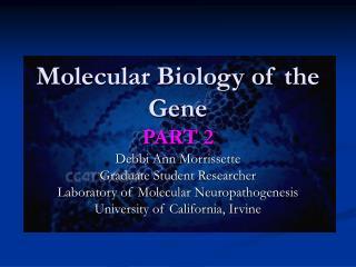 Molecular Biology of the Gene PART 2