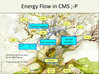 Energy Flow in CMS ;-P