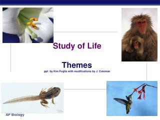 Study of Life Themes ppt  by Kim Foglia with modifications by J. Coleman