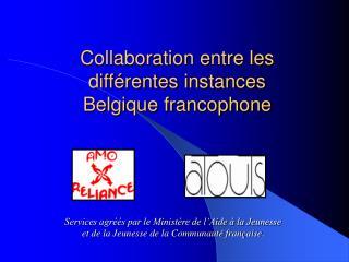 Collaboration entre les différentes instances Belgique francophone
