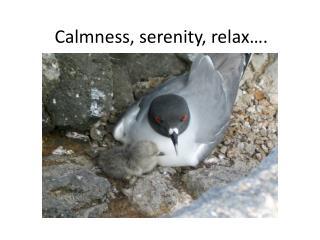 Calmness, serenity, relax….