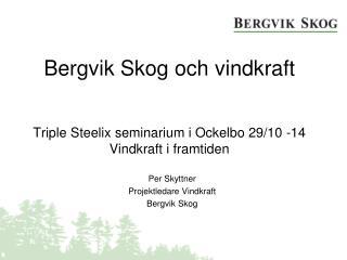 Bergvik Skog och vindkraft Triple Steelix  seminarium i Ockelbo 29/10 -14  Vindkraft i framtiden