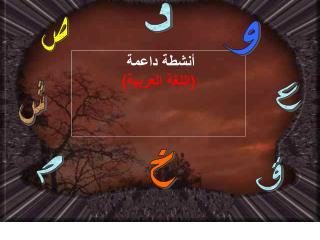 أنشطة داعمة ( اللغة العربية )