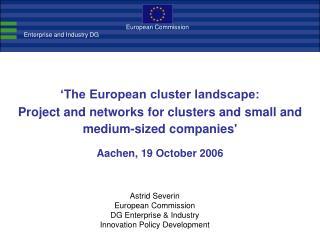 'The European cluster landscape: