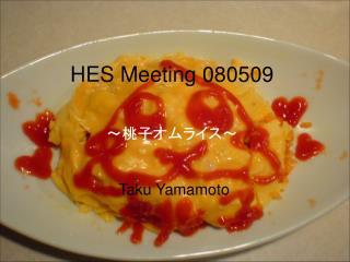 HES Meeting 080509 ????????? Taku Yamamoto