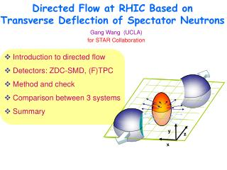 Directed Flow at RHIC Based on Transverse Deflection of Spectator Neutrons