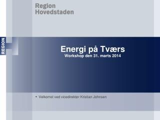 Energi på Tværs Workshop den 31. marts 2014
