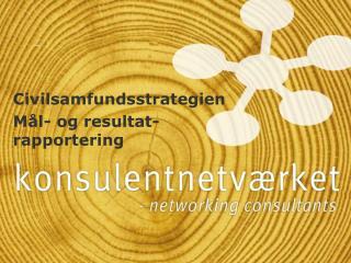 Civilsamfundsstrategien Mål- og resultat-rapportering