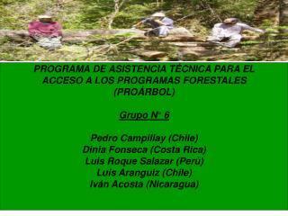 PROGRAMA DE ASISTENCIA TÉCNICA PARA EL ACCESO A LOS PROGRAMAS FORESTALES (PROÁRBOL) Grupo N° 6