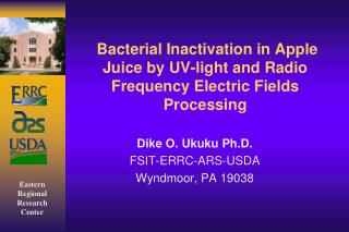 Bacterial Inactivation in Apple Juice by UV-light and Radio Frequency Electric Fields Processing