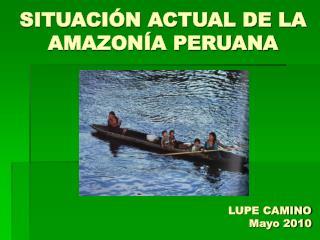 SITUACIÓN ACTUAL DE LA AMAZONÍA PERUANA