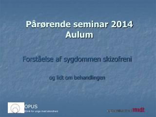 Pårørende seminar 2014  Aulum