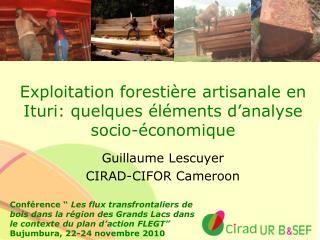 Exploitation forestière artisanale en Ituri: quelques éléments d'analyse socio-économique