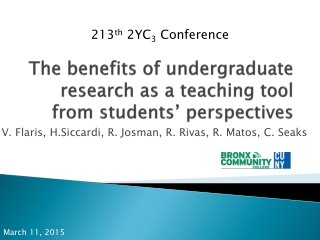 Undergraduate Research Perspectives