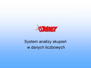 System analizy skupień  w danych liczbowych