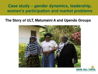 Case study – gender dynamics, leadership, women's participation and market problems