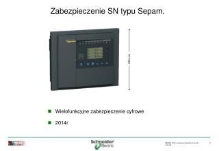 Zabezpieczenie SN typu Sepam.
