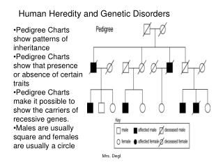 Human Heredity and Genetic Disorders