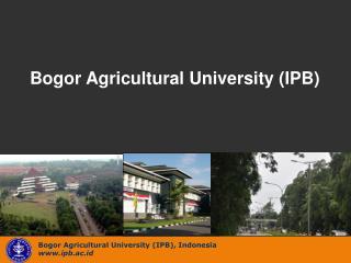 Bogor Agricultural University (IPB), Indonesia ipb.ac.id