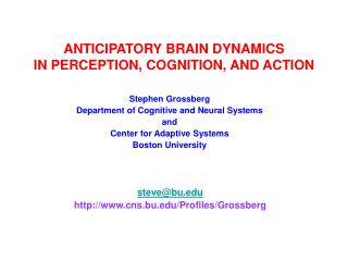 ANTICIPATORY BRAIN DYNAMICS IN PERCEPTION, COGNITION, AND ACTION