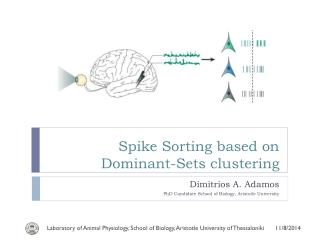 Spike Sorting based on Dominant-Sets clustering