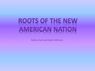 Roots of the new American nation