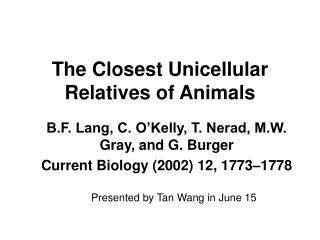 The Closest Unicellular Relatives of Animals