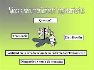Micosis secundariamente tegumentarias