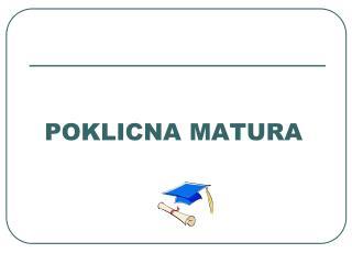 POKLICNA MATURA