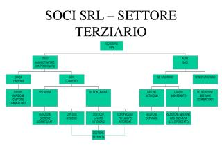 SOCI SRL – SETTORE TERZIARIO