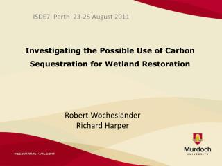Investigating the Possible Use of Carbon Sequestration for Wetland Restoration