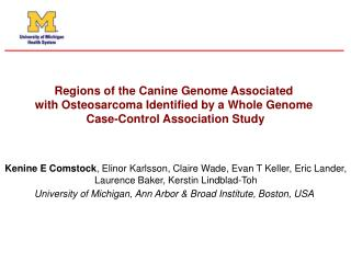 Regions of the Canine Genome Associated  with Osteosarcoma Identified by a Whole Genome