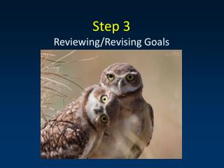 Step 3 Reviewing/Revising Goals